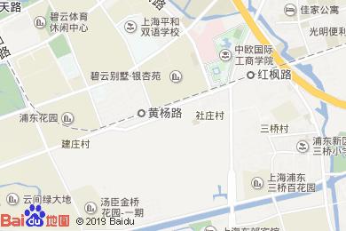 麥新格國際酒店(上海迪士尼店)地圖